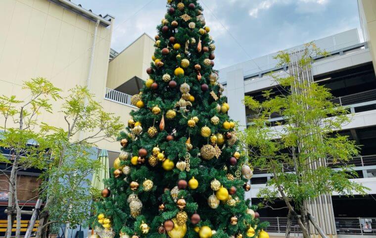 アイキャッチ:クリスマスまであとすこし☆!